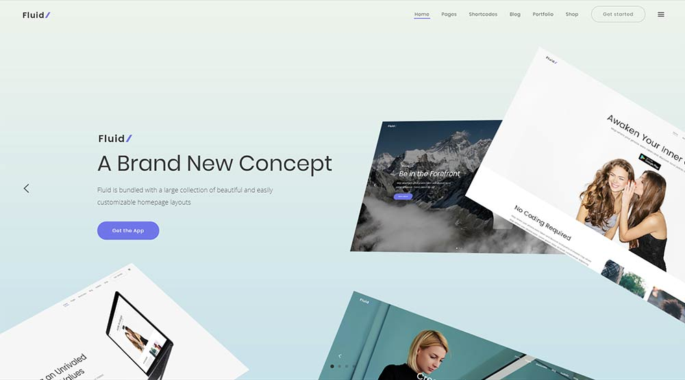 Fluid WordPress Theme