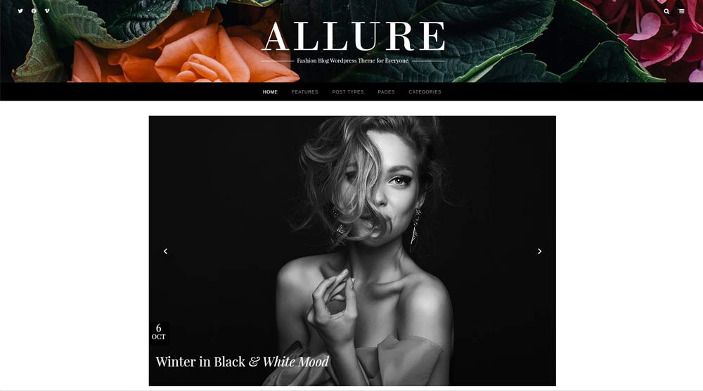 allure-wordpress-theme