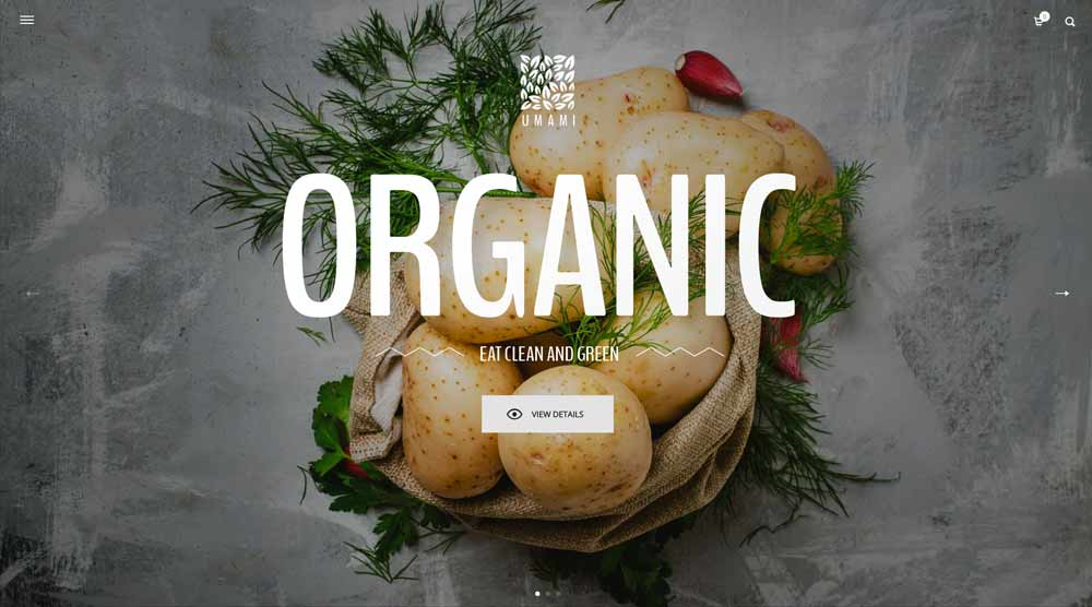 organic-restaurants-wordpress
