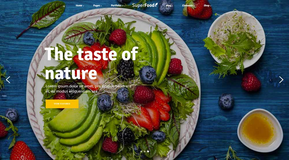 superfood-wordpress-template