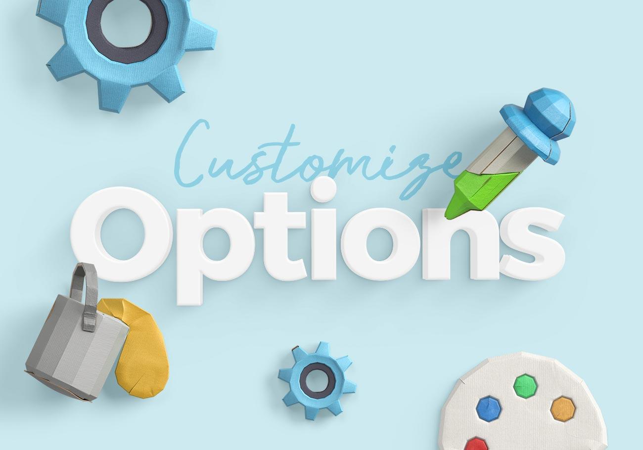 Customize Option in WordPress