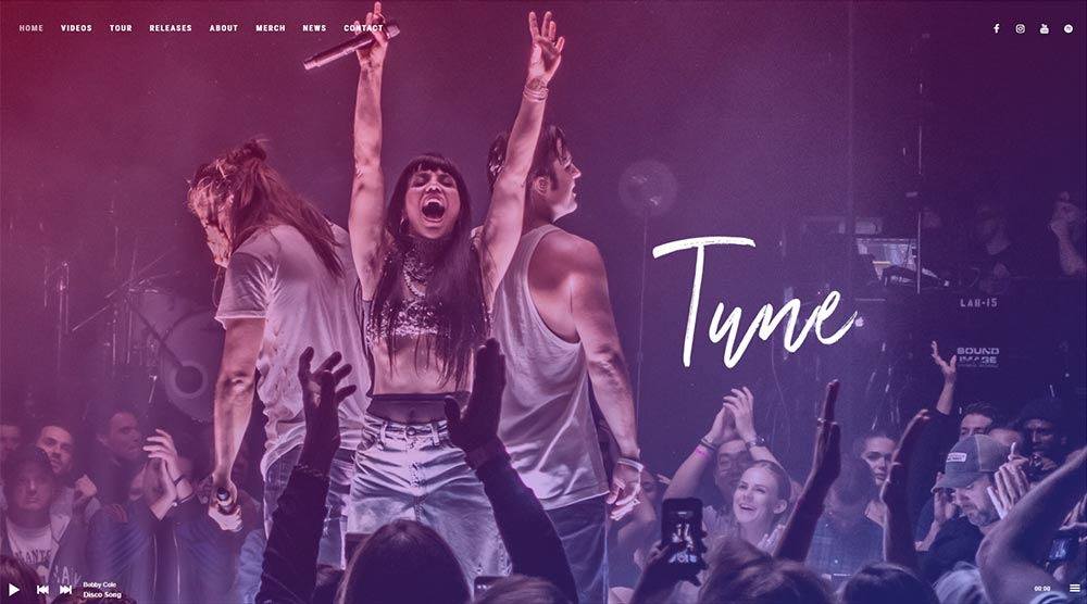 Tune WordPress Themes