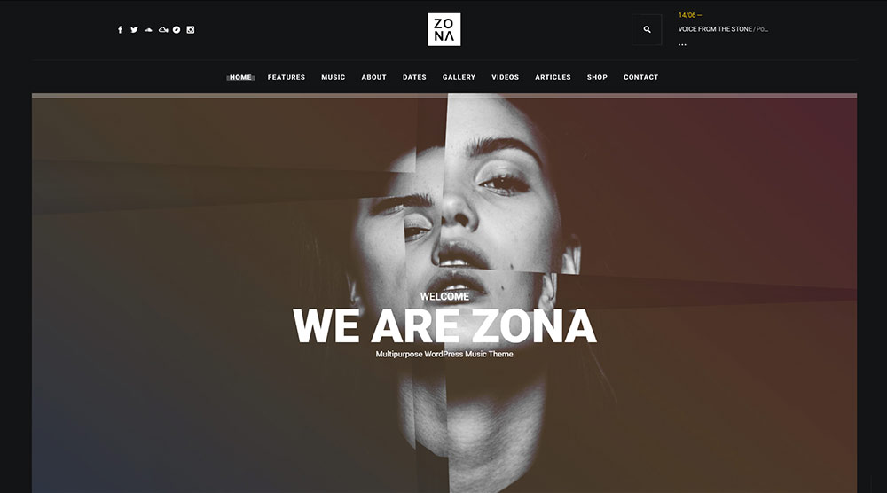 Zona WordPress Themes
