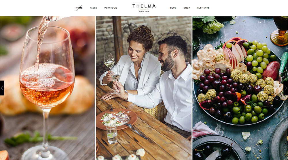 Thelma wordpress theme