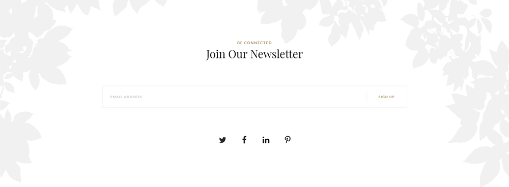 Villenoir newsletter