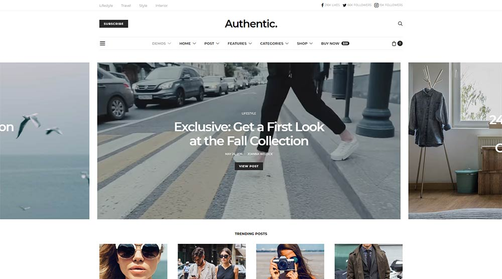 Authentic-WordPress-Theme