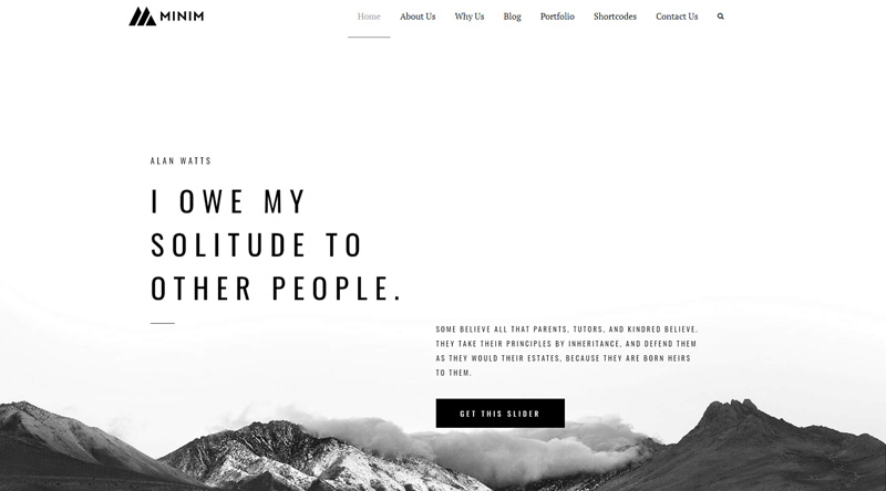 Minim WordPress Theme