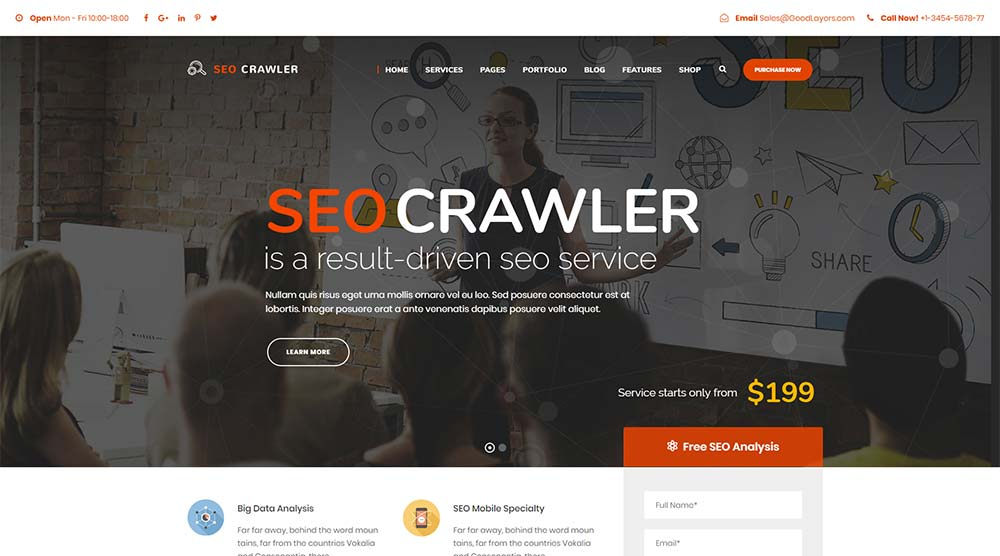 SEO Crawler WordPress Theme