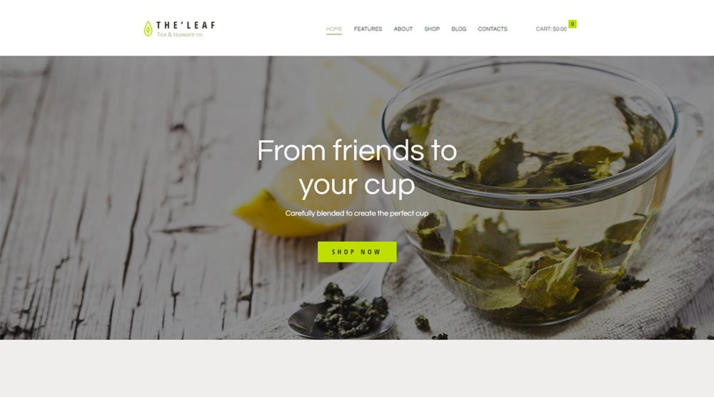 TheLeaf WordPress Theme