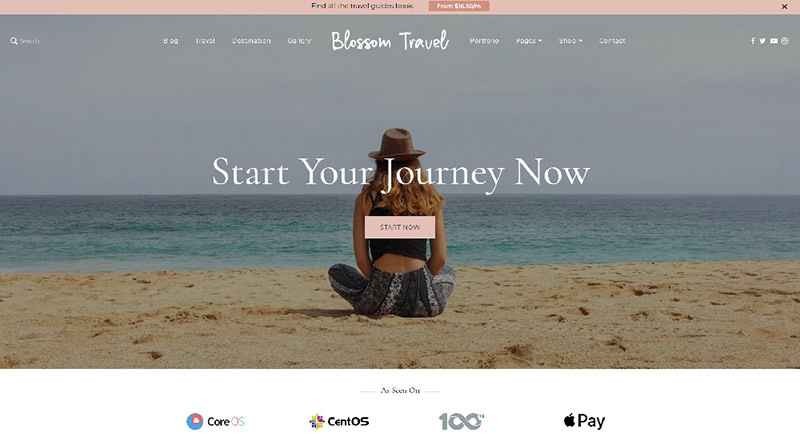 Blossom Travel Pro WordPress Theme