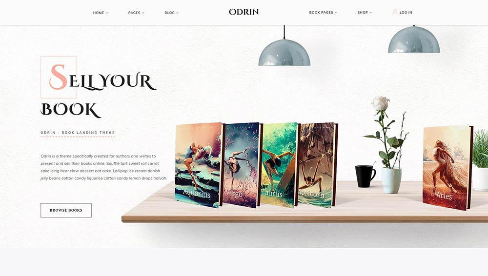 Odrin WordPress Theme