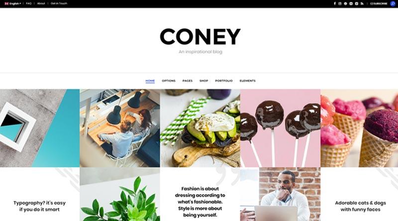 Coney WordPress Theme