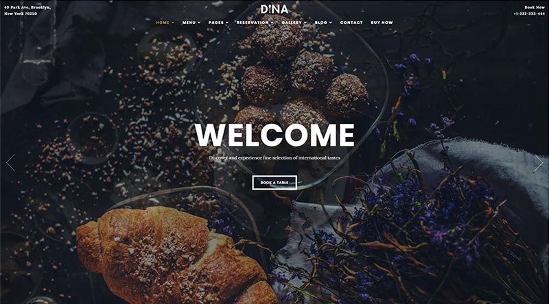 Dina WordPress Theme