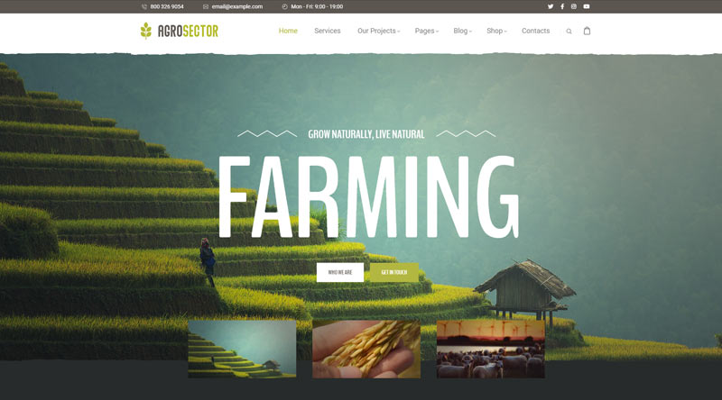 Agrosector WordPress Theme