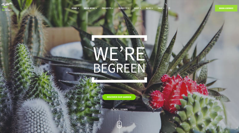 BeGreen WordPress Theme