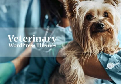 Best Veterinary WordPress Themes for Furry Friends