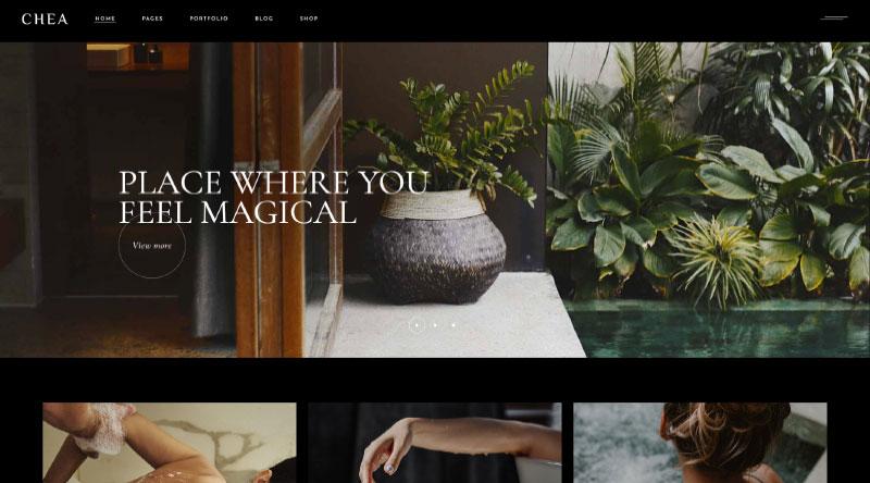 Chea WordPress Theme