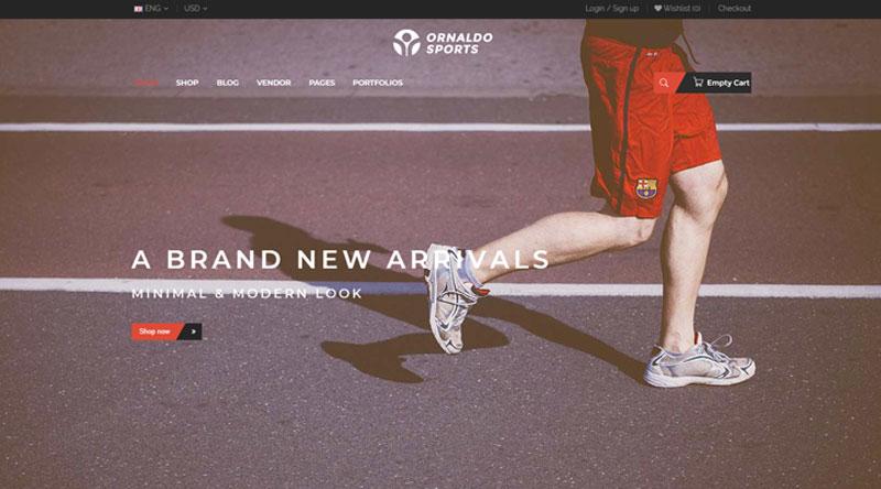 Ornaldo WordPress Theme