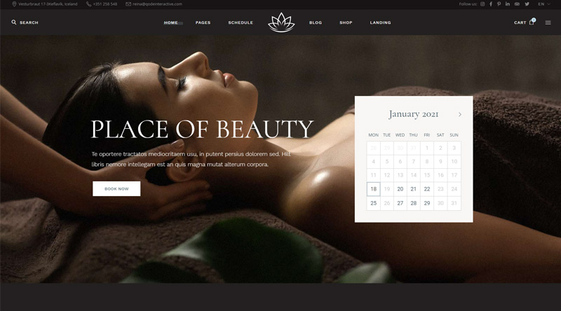 Reina Spa WordPress Theme