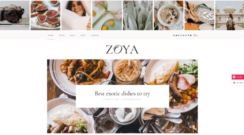 Zoya lifestyle blog theme
