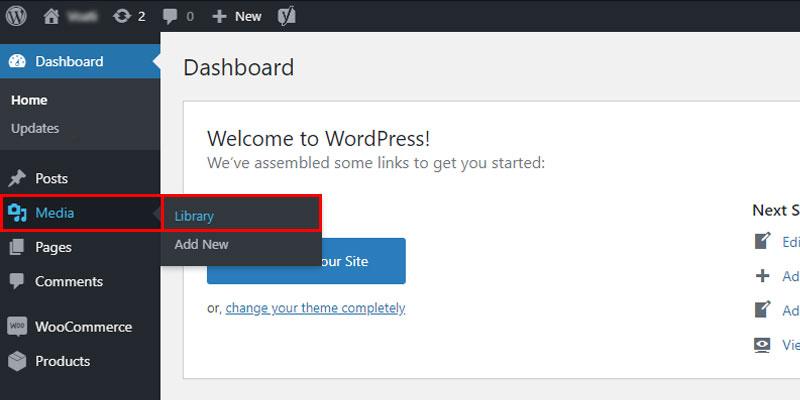 Media Library in WordPress