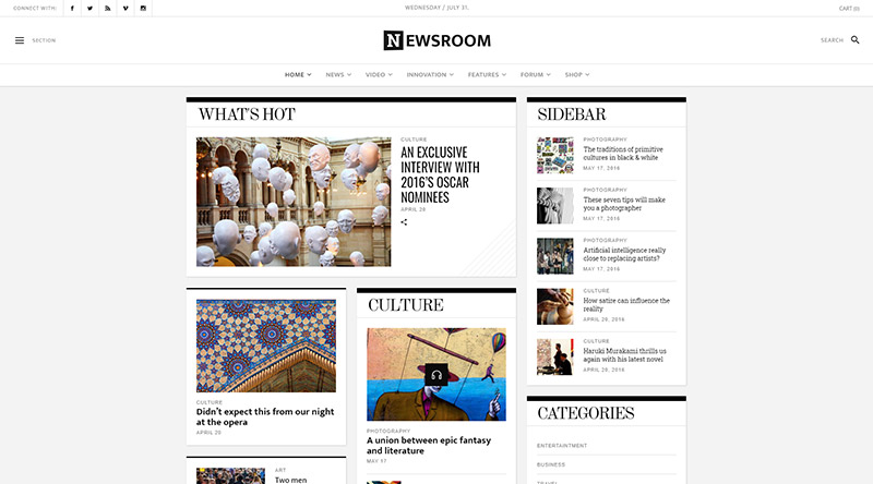 Newsroom WordPress Theme