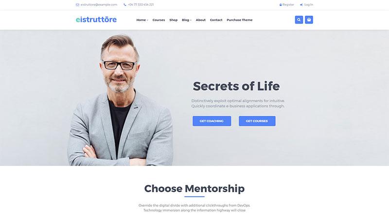 Eistruttore WordPress Theme