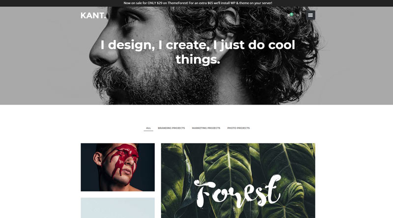 Kant WordPress Theme