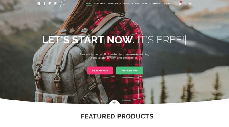 Rife Free WordPress Theme