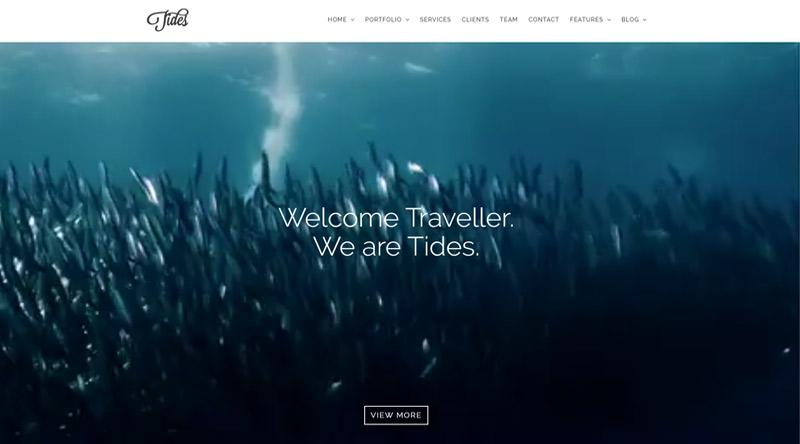 Tidest WordPress Theme