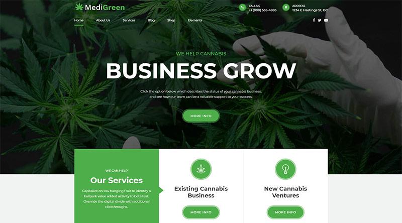 MediGreen WordPress theme