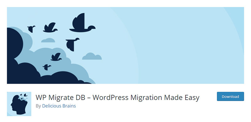 WP Migrate DB Plugin