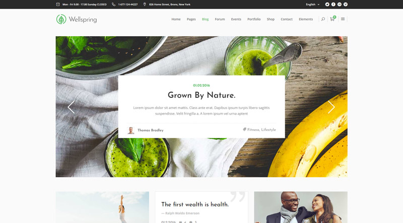Wellspring Health WordPress Themes