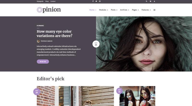 Opinion Publishing WordPress Themes