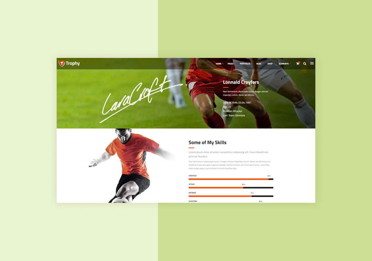 Great Football WordPress Themes for a Winning Website