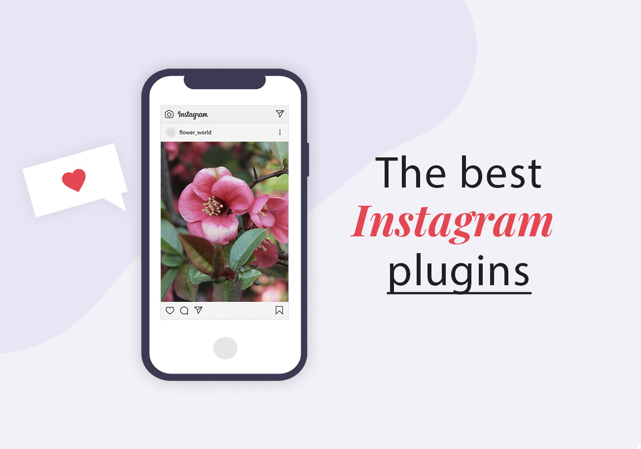 Best Instagram WordPress Plugins to Try