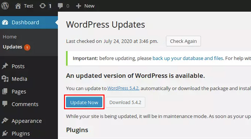 Update WordPress Now button