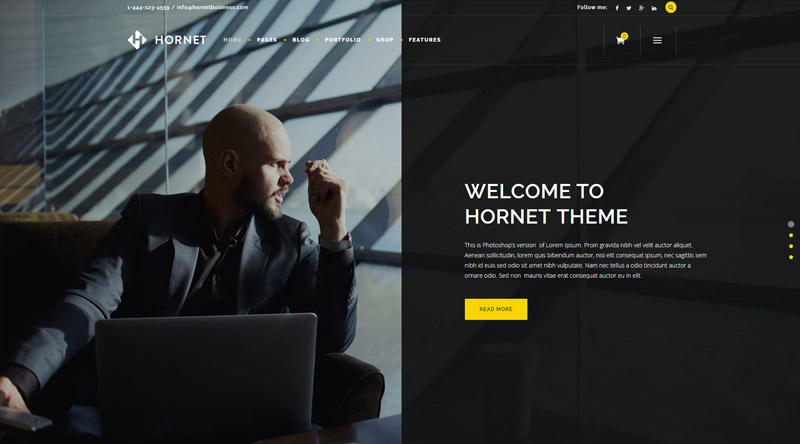 Hornet WordPress Theme