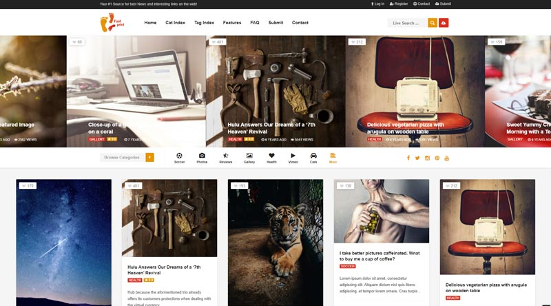 Foot WordPress Theme