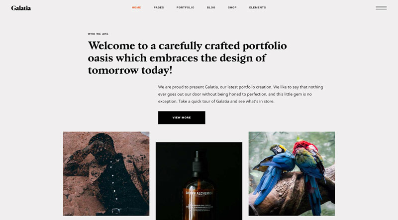 Galatia Pinterest WordPress Theme