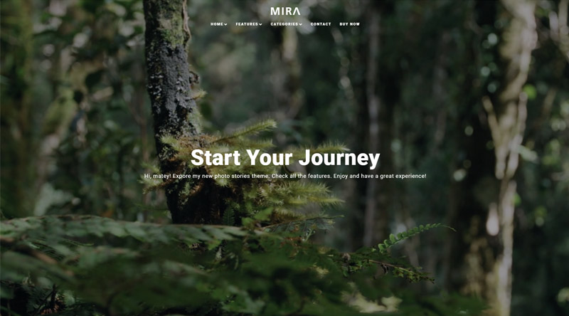 Mira WordPress Theme