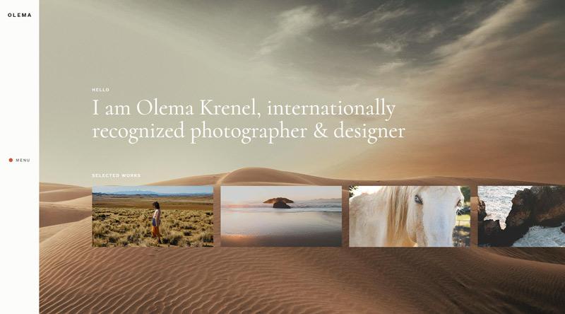 Olema Photo Gallery WP theme
