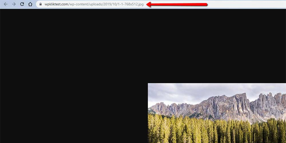 Image URL