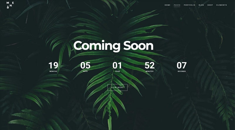 Mane Coming Soon WordPress Themes