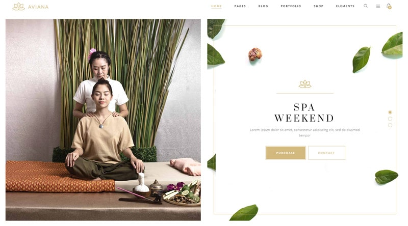 Aviana Massage WordPress theme