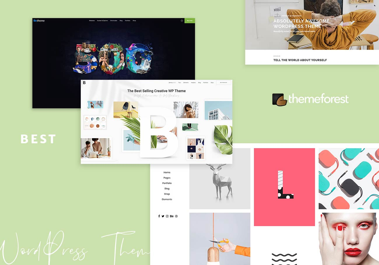 Best ThemeForest Themes for Any Business