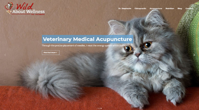 Wild About Wellness for Animals