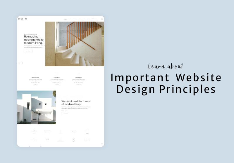 Website Design Principles That Work