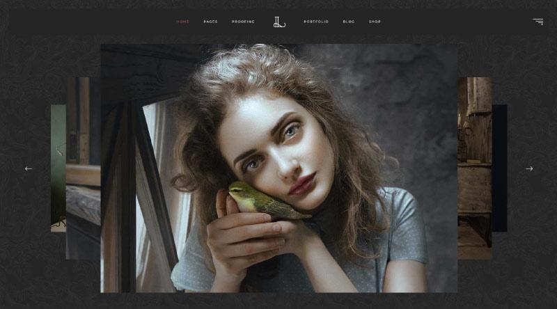 Lumiere WordPress Theme
