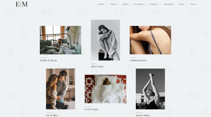 Snapster WordPress Theme